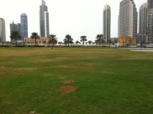Burj park grass