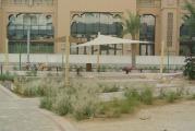 Al Ittihad Park Palm Jumeirah Dubai